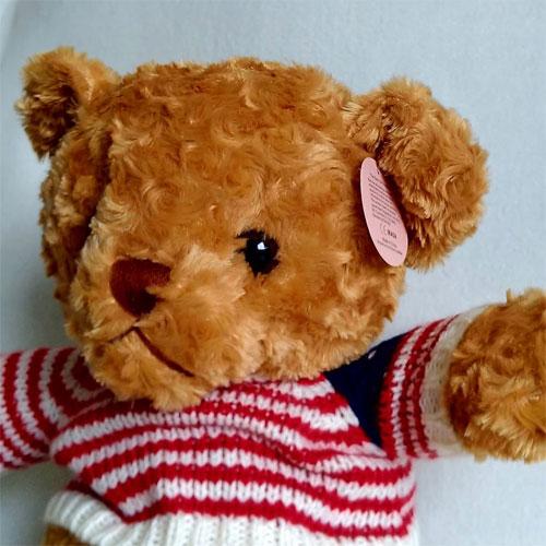 IKASA Sweater Teddy Bear