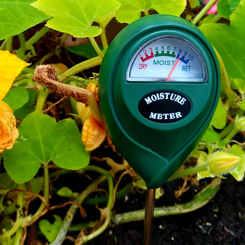 Xlux Soil Moisture Sensor Wet